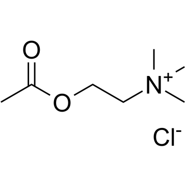 60-31-1 Acetylcholine chloride